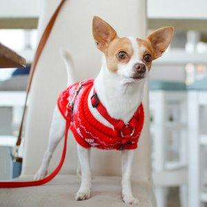 低至5折 + 额外8折Animaze 精选狗狗用品促销热卖 低价入狗笼、狗床等