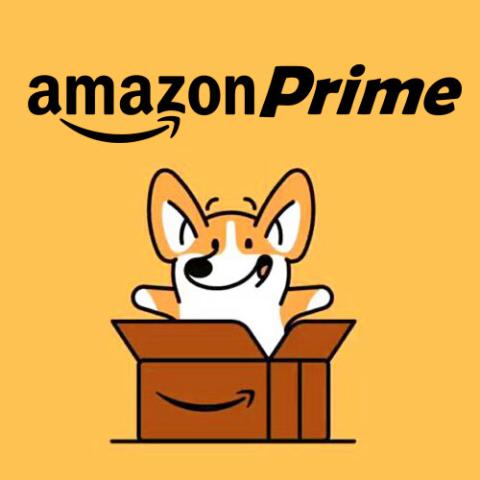 开通免费试用30天 下单更顺畅Amazon Prime会员福利盘点 一年订阅低至€24/年