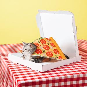 $3.43起Chewy 今日热门猫咪食品及用品折扣,每日更新