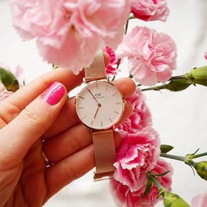 8折 包邮Daniel Wellington 32mm 玫瑰金不锈钢表带手表