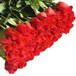 $61.16 销量冠军Farm-Fresh Roses 新鲜玫瑰花 96支