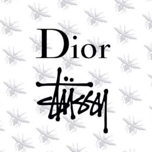 有货速抢 对面英国官网已断货Dior X Stussy 强强组合开售 一场经典和街潮的完美碰撞