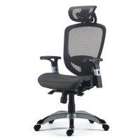 FlexFit™ Hyken 办公椅