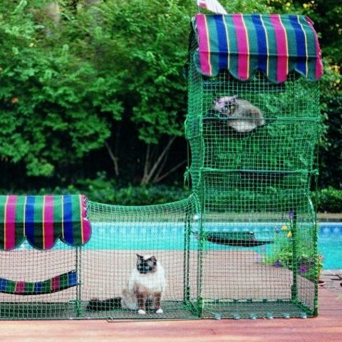 Up to 25% OffKittywalk Outdoor Cat Enclosure on Sale