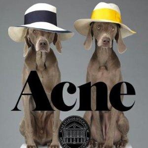 €330即收短袖衬衫 狗奴必收上新:Acne Studios 2020秋冬新款 联名超萌狗狗衬衫 码全速收