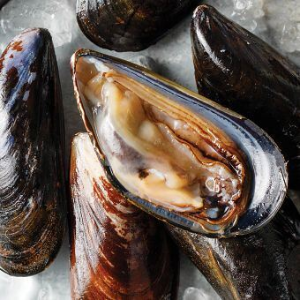 Up to 53% OffOmaha Steaks Popular Shellfish on Sale