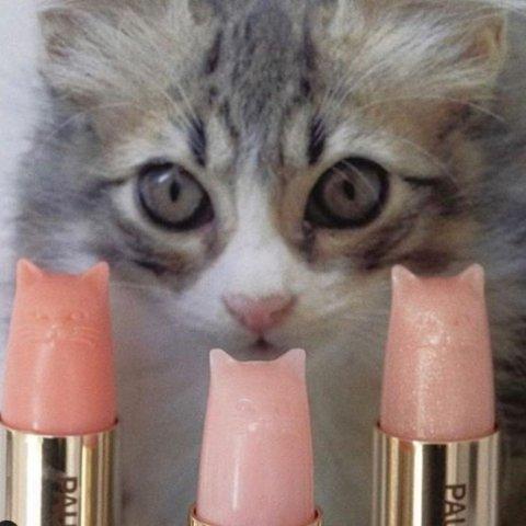 满额7.5折 €12收猫咪唇膏Paul & Joe 少女心爆棚的彩妆热卖 收搪瓷妆前乳、猫咪口红等