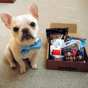 BarkBox订阅盒