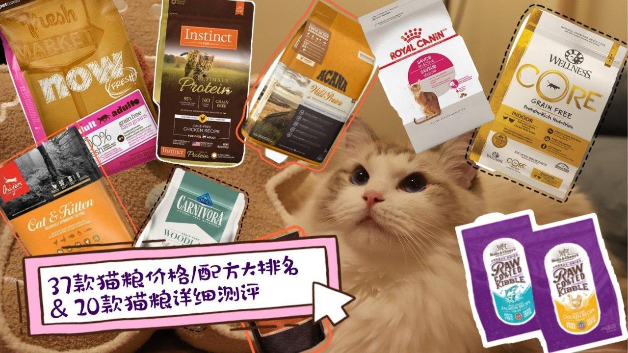 【养猫指南】最全猫粮科普之干粮P2——全方位种草排行及选购建议