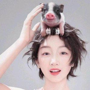 无法抗拒的小猪猪【2019新春美容礼单】猪年限量彩妆护肤产品都在这儿啦