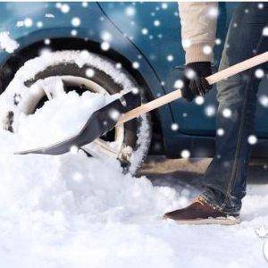 $6.29(原价$10.49)Garant LPP18VD 18英寸雪铲