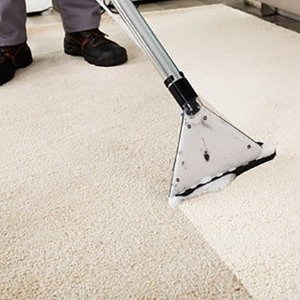 $69(原价$195) 多间房深层清洁A Pristine Carpet Clean 悉尼地毯清洗上门服务