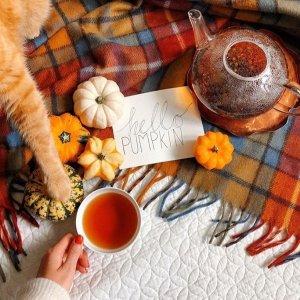 Whittard 英国老牌茶叶品牌大促 收经典英式早茶