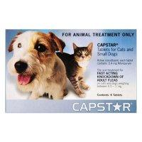 Capstar 猫咪驱虫药 6颗