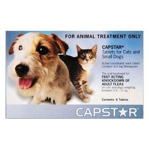 Capstar猫咪口服驱虫药 6颗