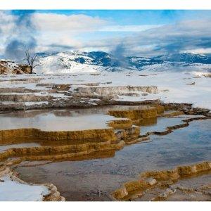 黄石国家公园旅游攻略DIY你的黄石计划