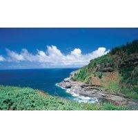 <圣诞季出行不涨价!夏威夷5日>【欧胡岛悠闲半自助】慢节奏度假体验,超高性价比,赠小环岛或珍珠港行程!