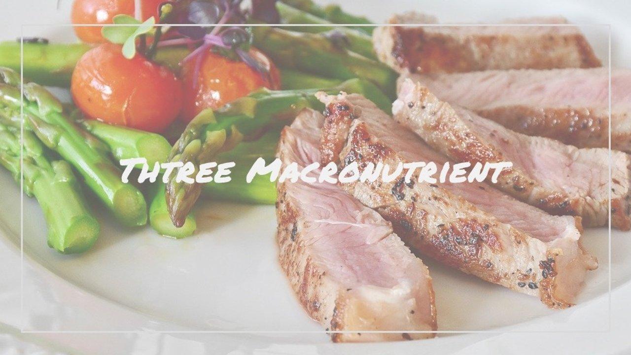 减脂必看!蛋白质、脂肪、碳水怎么吃?三大营养元素摄入计算公式!