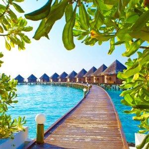 每人立减$100, 佛州4晚套餐$535坎昆、迈阿密、马尔代夫海滩机酒套餐促销,超40多种度假选择