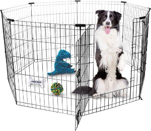 Frisco Dog Exercise Pen with Step-Through Door, Black, 30-in - Chewy.com