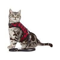 BOND & CO. 猫咪无伤害马甲+牵引绳