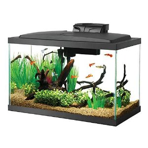 $9.08Aqueon 10加仑玻璃鱼缸水族馆