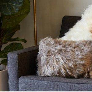 From $19Luxe Faux Fur Decor @ Hautelook