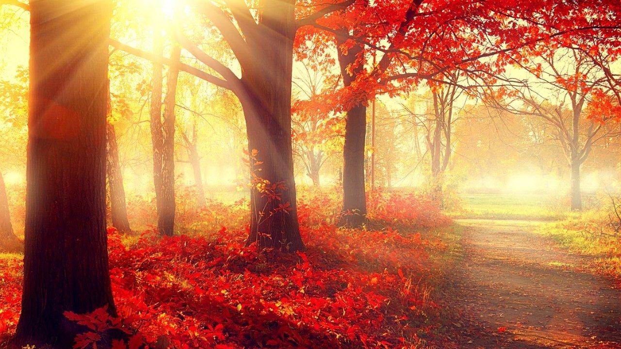 除了新英格兰,美国还有这些秋天观赏红叶美景的胜地!