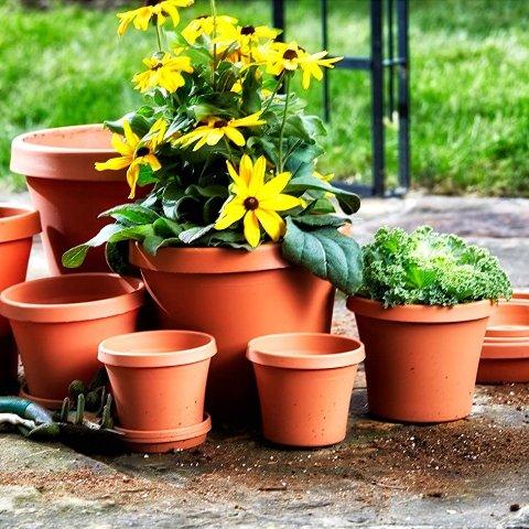 Bloem Terra Plastic Pot Planter 6