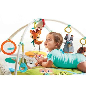 Extra 20% Offbuybuy Baby Tiny Love baby toys Sale