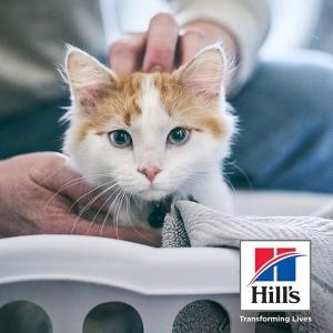 立减$12Hill's Science Diet 多款猫咪干粮大促