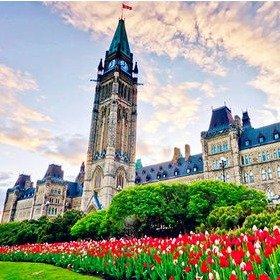 5月11日-5月21日渥太华周边游:加拿大郁金香节 小长假别错过