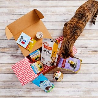 $9.95Goody Box Made in the USA for Cats