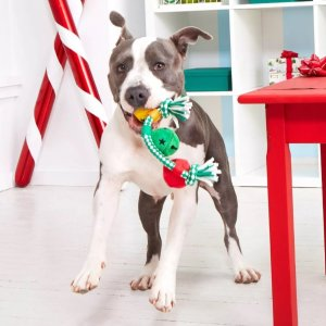 As low as $0.99Target Christmas Gifts for Pets