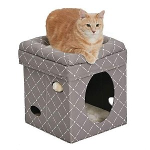 MidwestCurious Mushroom Cat Cube | Petco