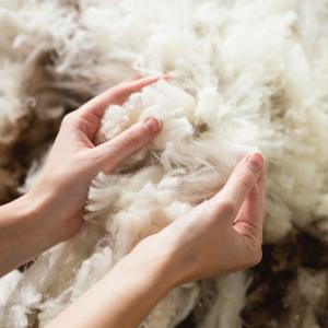 低至5折 羊毛被直降$192MiniJumbuk 人人都爱的国民床品捡漏 羊毛枕仅$30