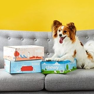 As low as $24.99Chewy Dog Goody Box
