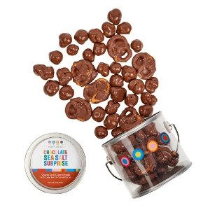DYLAN'S CANDY BAR CHOCOLATE SEA SALT SURPRISE PAINT CAN