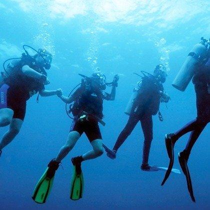 索诺玛海岸SSI OW 潜水资格课程