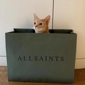 6折起 £27收简约T恤AllSaints £100以下爆款专场 收T恤卫衣、牛仔休闲裤、连衣裙