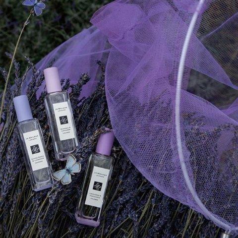 无门槛7.5折+包邮 光速断货逆天价:Jo Malone 薰衣草花园系列终于上线 粉紫系英式神仙颜值