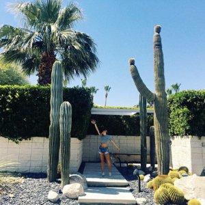 4晚起住 最多12人入住 $1310/晚加州棕榈泉豪宅度假了解一下