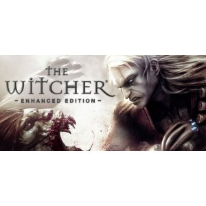 BESTON PUREThe Witcher: Enhanced Edition Director's Cut
