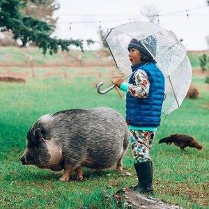 7.5折 $15收泡泡伞最后一天:Totes 精美雨伞春季独家大促