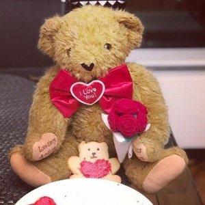 $19.99(原价$29.99)闪购:Vermont Teddy Bear 情人节可爱泰迪熊15英寸限时特卖