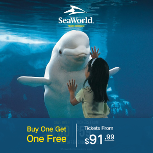 Buy One Get One FreeEnding Soon: SeaWorld San Diego Black Friday Sale