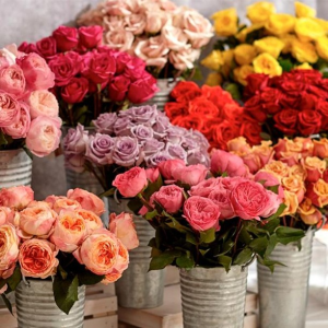 15% OffProFlowers Flowers & Gifts Sale