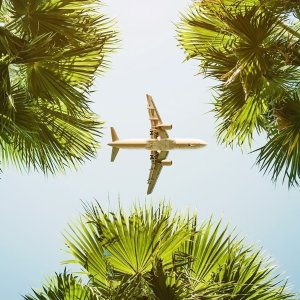 Roundtrip Start From $97Travelzoo Fly to Miami & Fort Lauderdale Discount