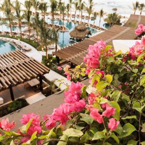 $65起 黎贝卡同款大起底 美图预警墨西哥新晋网红目的地 Los Cabos 4-5星 酒店入住超值价