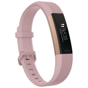 Fitbit智能手环- Large - Pink